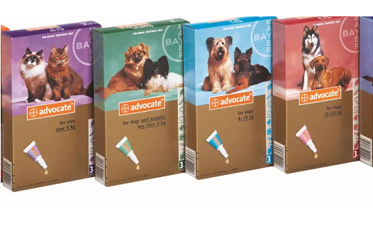 Bayer Pet Health