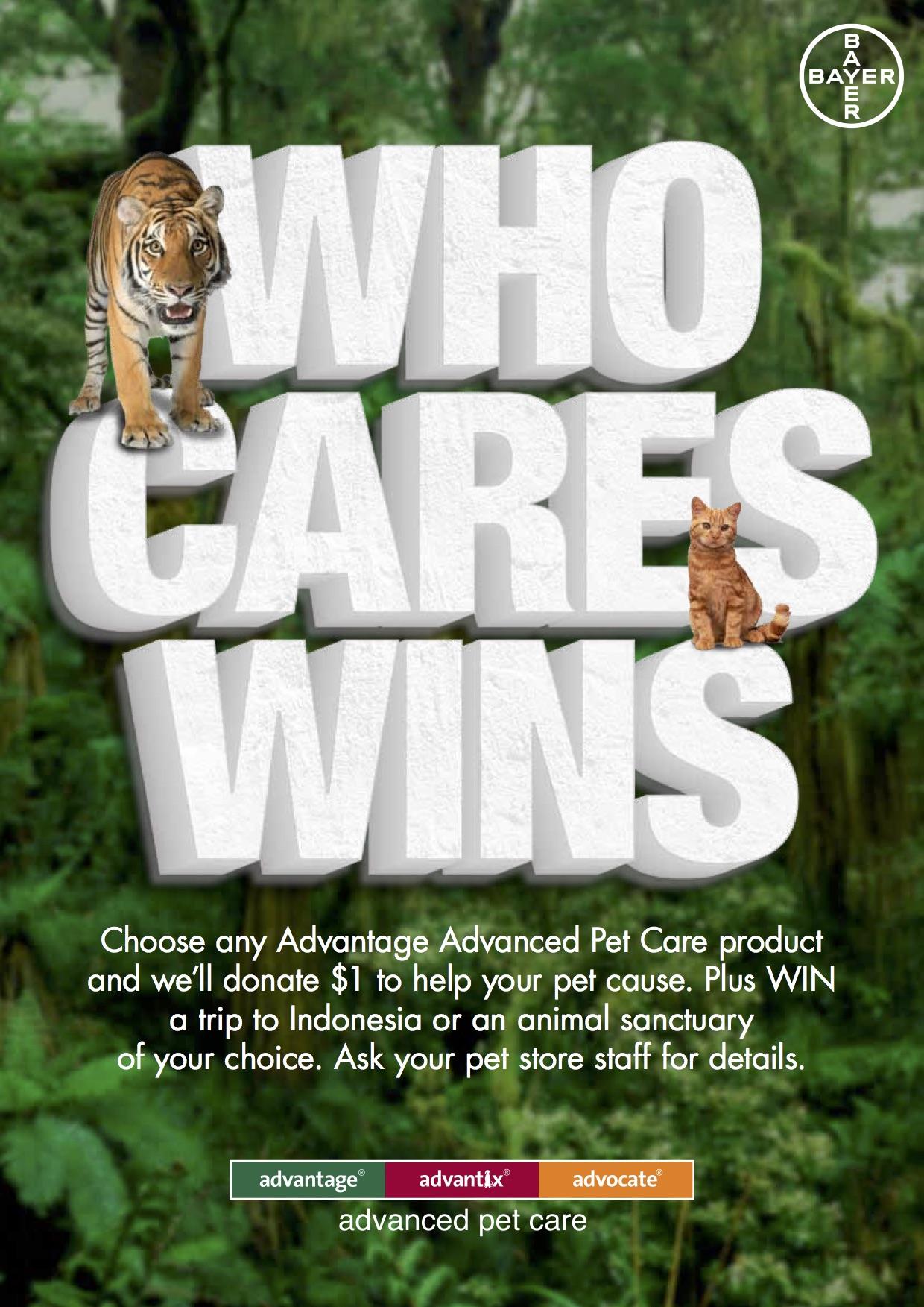 who_cares_wins